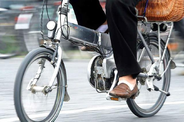 Für die Landesgartenschau gibt's 120 Elektro-Leihräder