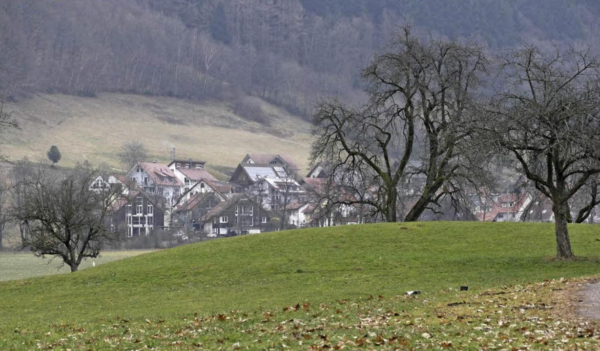 Unter diesem Hügel in Oberried befinde...iner mittelalterlichen Turmhügelburg.   | Foto: Markus Donner