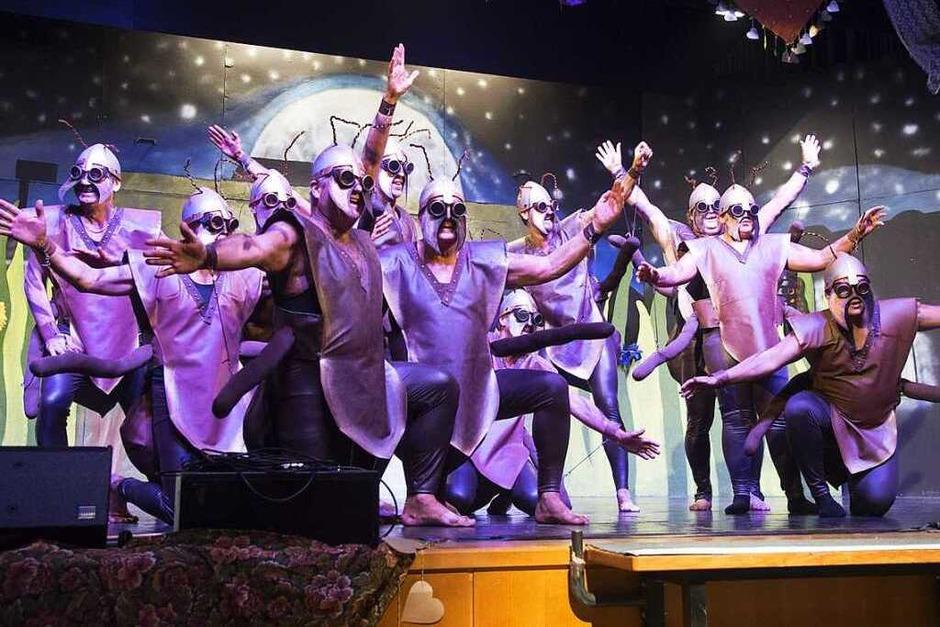 """Als """"fleißige Ameisen"""" tanzten die Zigeuner-Männer über die Bühne. (Foto: Volker Münch)"""