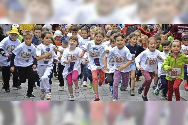 Lörrach: Pilotprojekt an der Fridolinschule soll ausgeweitet werden