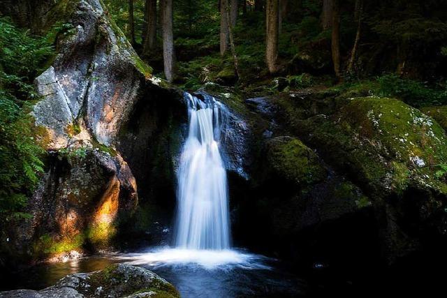Schwarzwald mit neuem Rekord beim Tourismus