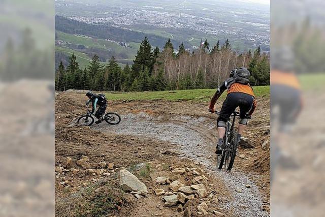 Fahrten mit dem Bähnle von Sasbachwalden bis zum Hornisgrindegipfel geplant