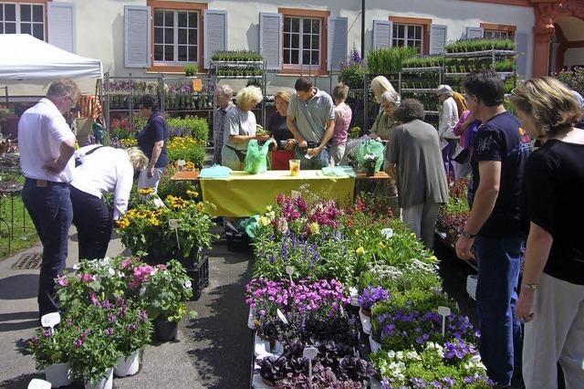 DiGA Gartenmesser um das Schloss Beuggen bei Rheinfelden im Juli