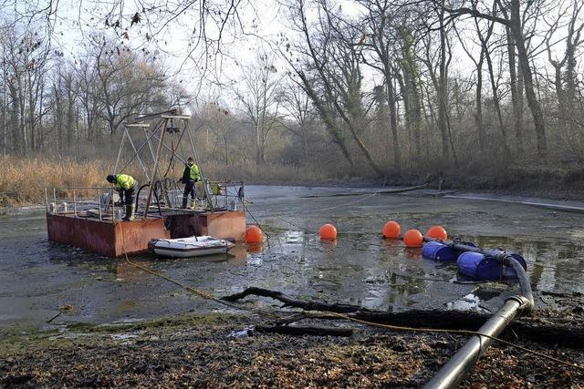 Mit einer Pumpaktion wird das Seerosenloch ökologisch aufgewertet
