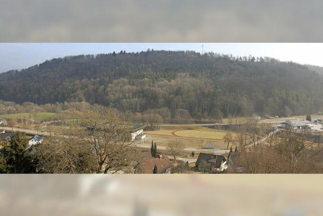 Der Schinderwald war einst die offizielle Abdeckerei der Region