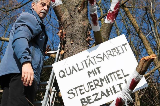 Blutender Baum: Künstler prangert schlechte Landschaftspflege an