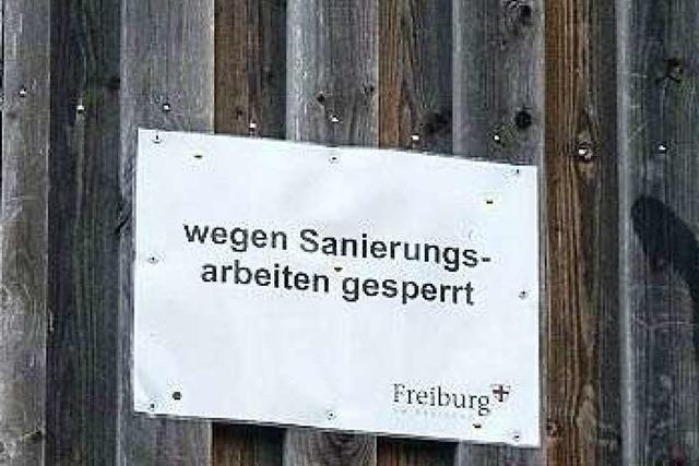 Unbekannte entfernen Geländer-Schrauben an Seeparkturm