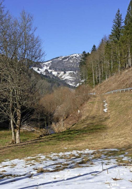 Hier befand sich  das frühere Bergwerk...Hintergrund ist  der Belchen zu sehen.  | Foto: Sattelberger