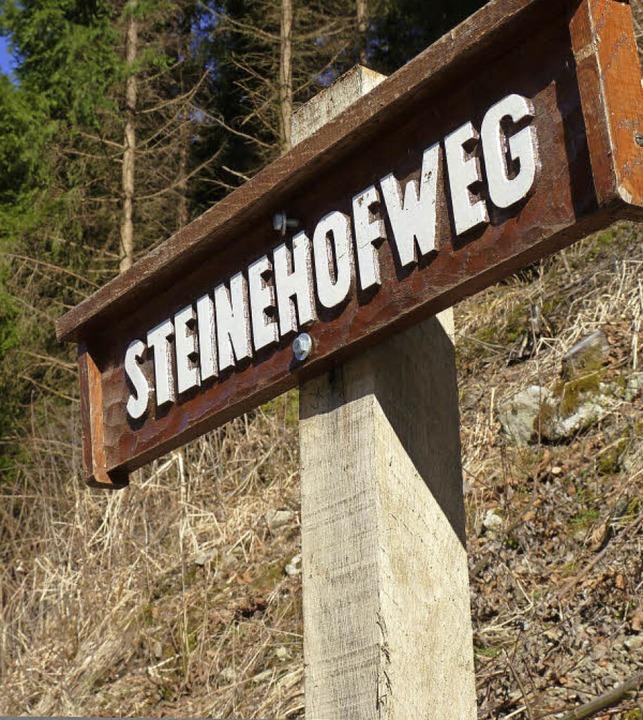 Der Begriff Steinehof ist heute noch g...er steilen Bergflanke neben der L139.   | Foto: sattelberger