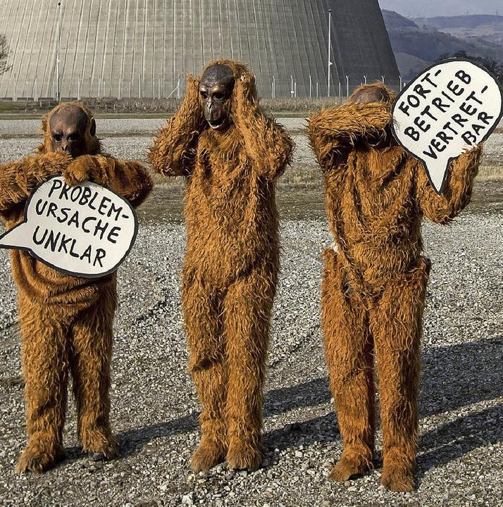 Verkleidete Aktivisten stehen vor dem Akw in Leibstadt.   | Foto: dpa