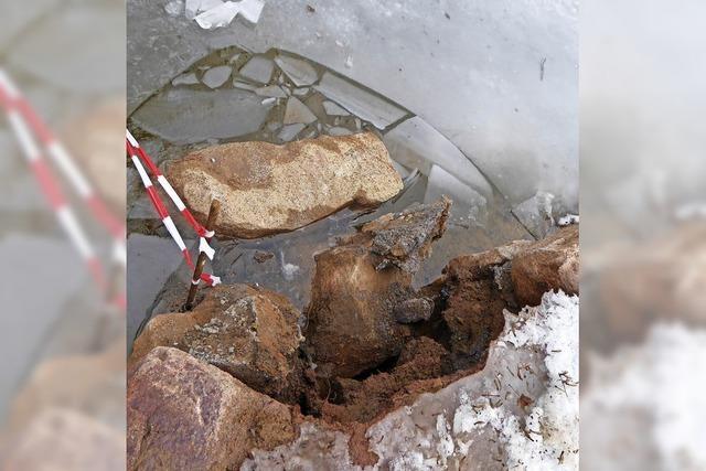 Abstürze am Neustädter Eisweiher