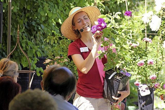 Frühlingsfrische Tipps zum Start ins Gartenjahr in Laufen