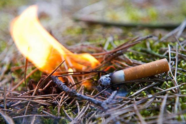 Zigarettenkippe setzt Unrat in Lörrach in Brand