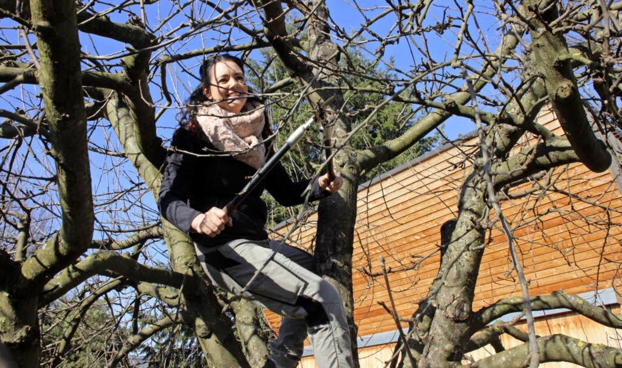 Eva Danner ist jetzt ausgebildete Baumwartin     Foto: Erika Sieberts