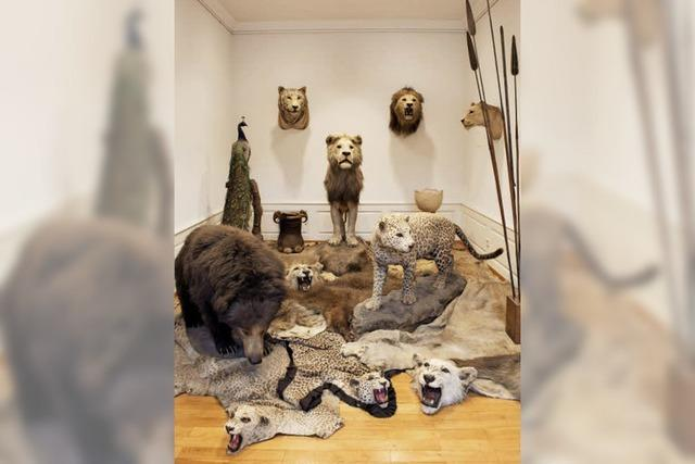 Offenburger Museum im Ritterhaus setzt auf Besucher-Interaktion