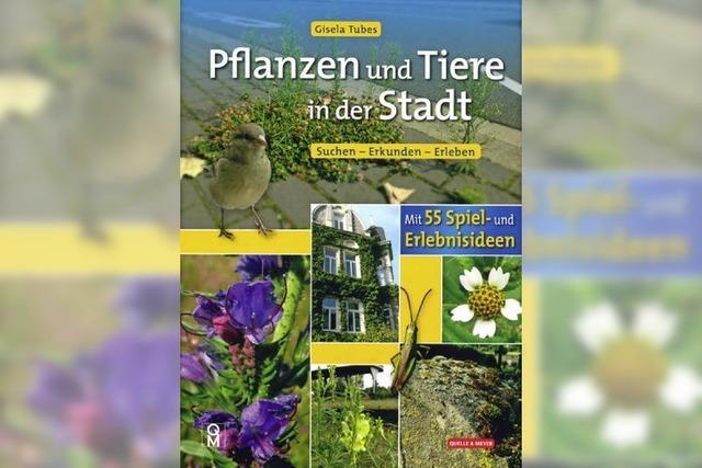 Pflanzen und Tiere in der Stadt erkunden und erleben