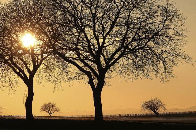 Sonnenuntergang in Heitersheim