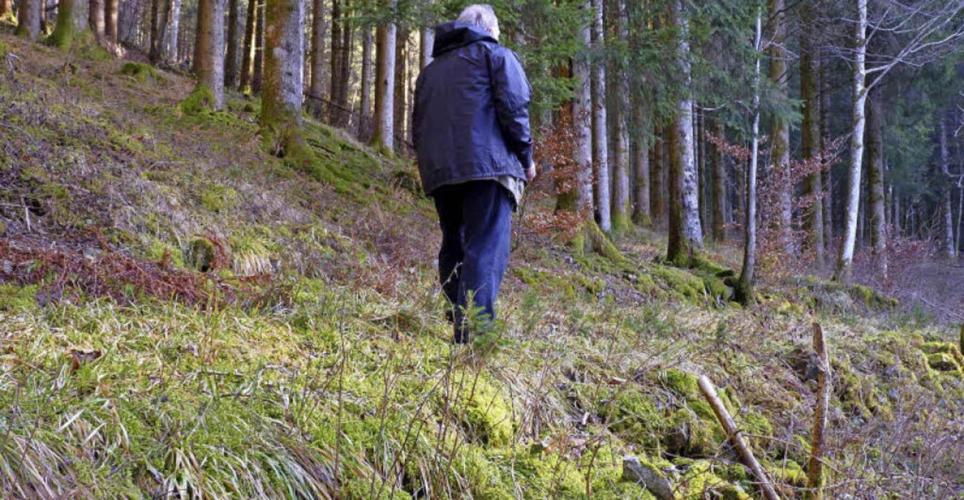 Werner Störk geht den historischen Weg...ein für Stein wurde der Weg aufgebaut.    Foto: Sattelberger