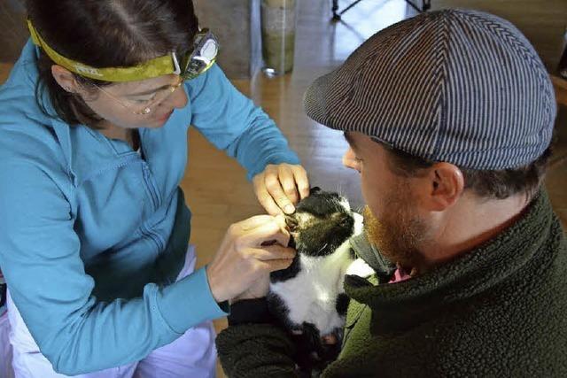 Jana Weber ist als mobile Tierärztin unterwegs und versorgt Kleintiere