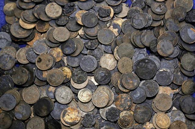 Schildkröte frisst 915 Münzen