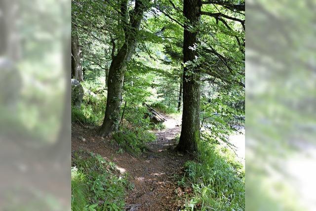 Wandern und Geselligkeit