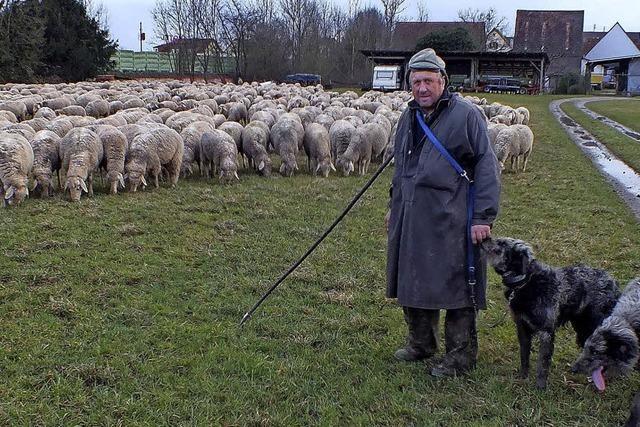 Schäfer Fehrenbacher ist zu Besuch