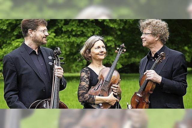 Mitglieder des Freiburger Barockorchesters geben ein Benefizkonzert im Historischen Kaufhaus: Sonntag, 12.3., 17 Uhr.