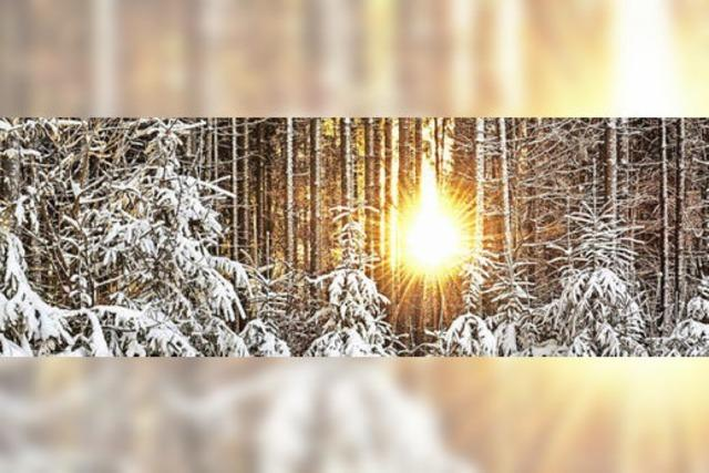 Mehr Sonne, weniger Schnee