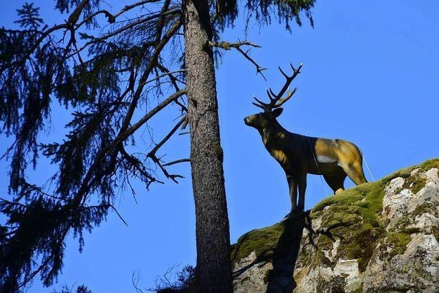 Der Plastik-Hirsch im Wehratal ist wieder weg