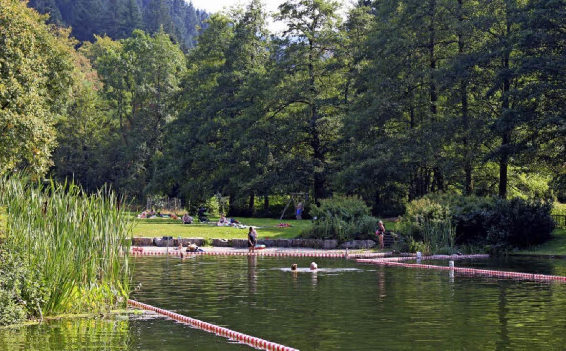 Das Naturschwimmbad in Sulzburg wird zur Badestelle.  | Foto: Archiv: Grziwa