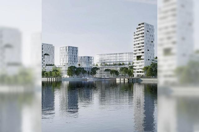 Gigantisches Projekt soll Hüningen aus Dornröschenschlaf wecken