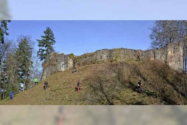 Ruine Keppenbach: Putztag auf der Burg