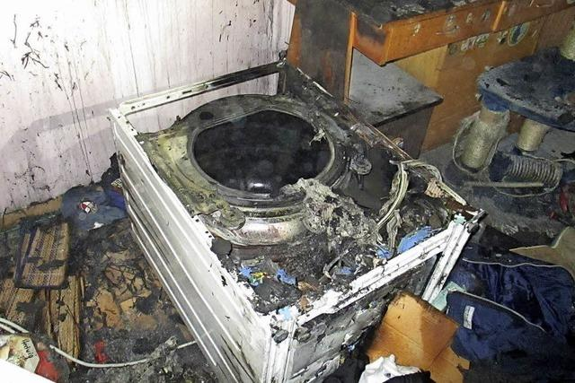 Fehlalarm, Kellerbrand und ein verängstigter Dachs