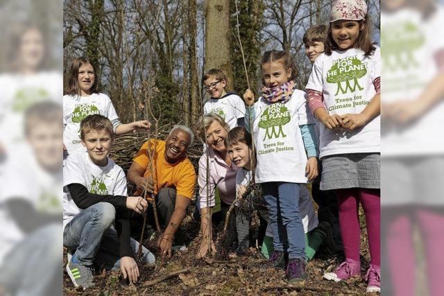 75 Kinder pflanzen 250 junge Eichen im Mooswald