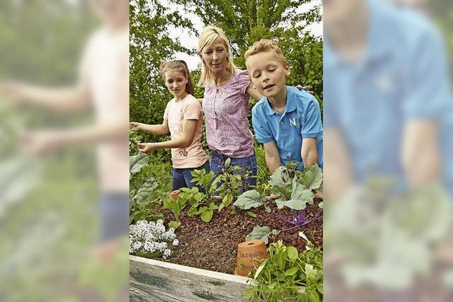 Rund um Haus und Garten