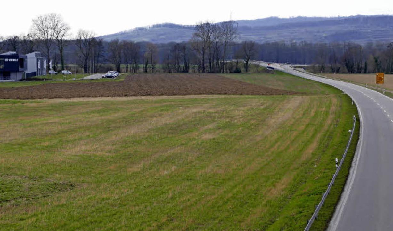 Gottenheim will sein Gewerbegebiet bis...ischen beiden Orten weiter schrumpft.   | Foto: Manfred Frietsch