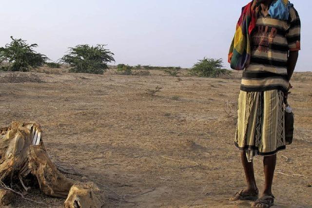 Somaliland fällt trotz des Friedens unter US-Einreisebann