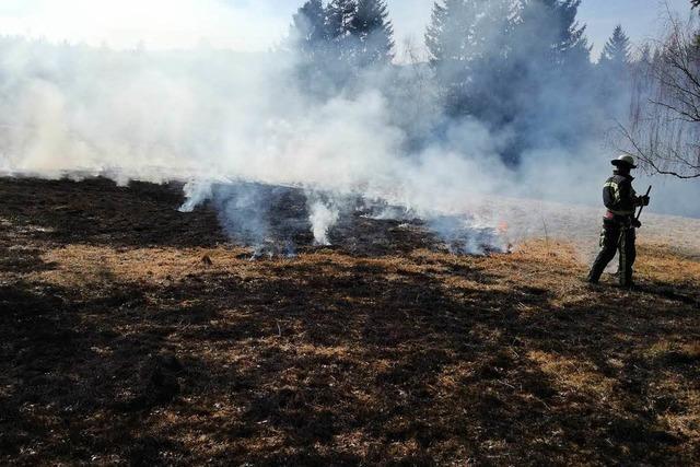 Ein Hektar Wiesenfläche steht in Flammen