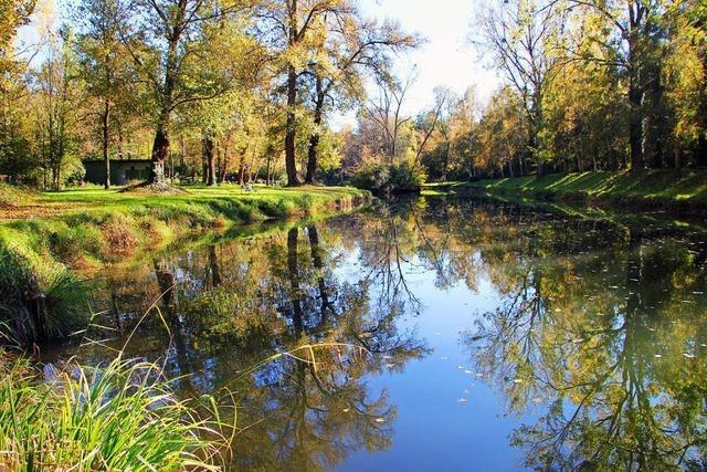 Bürgerinitiative kritisiert Umweltverbände