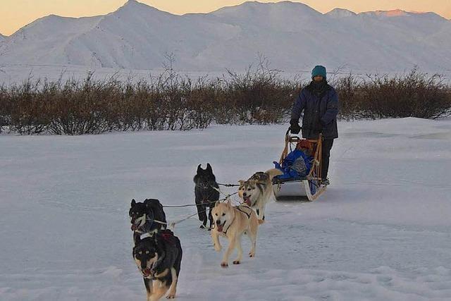 Extremes Leben: Ortenauer Trapper trotzt dem rauen Alaska