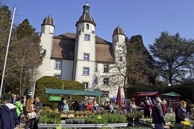 Ausstellung im Schlosspark