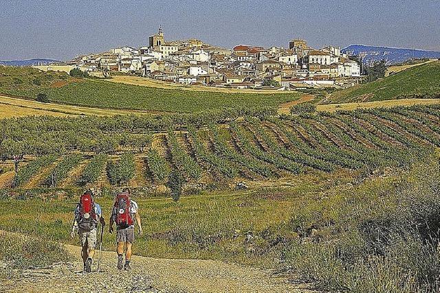 Martin Schulte-Kellinghaus berichtet über seine Pilgerreise
