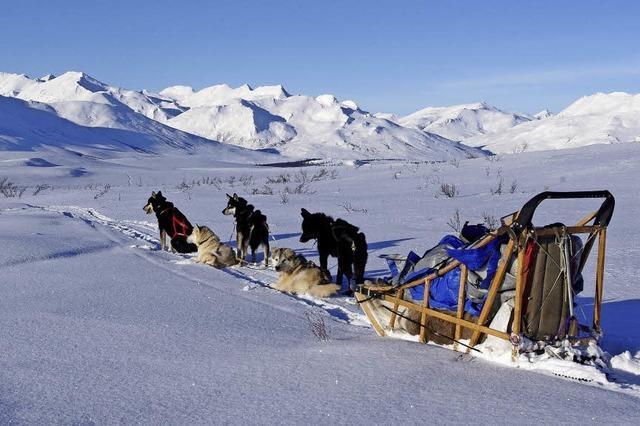 Sepp Herrmann berichtet über das Leben in Alaska