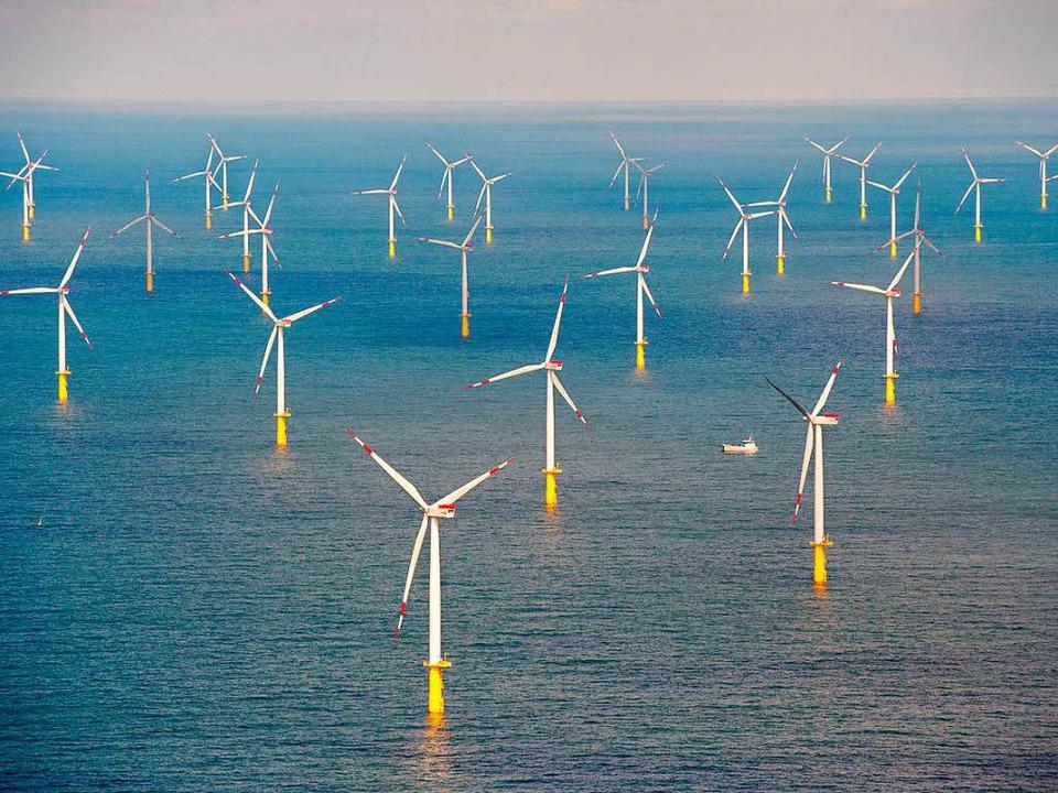 Gebiete für Offshore-Windparks werden knapp.  | Foto: Daniel Reinhardt