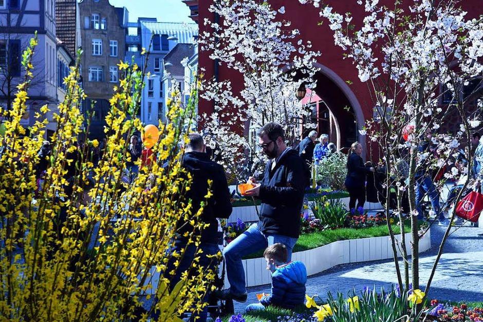 Impressionen vom Lahrer Blütensonntag (Foto: Wolfgang Künstle)