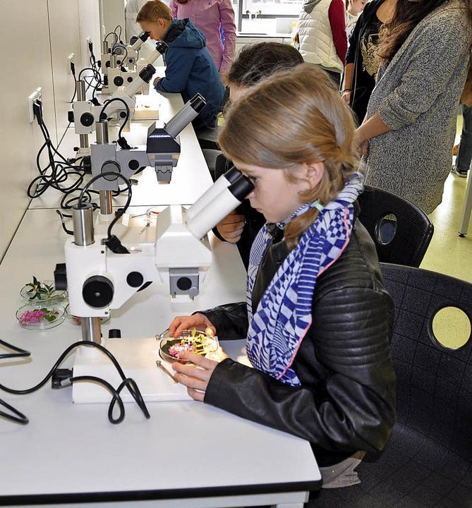 Naturwissenschaftliche   Experimente interessierten viele Mädchen.  | Foto: Rainer Ruther