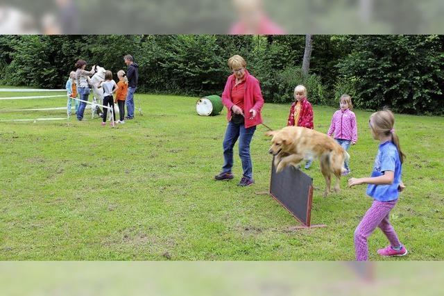 Hundefreunde müssen umsiedeln