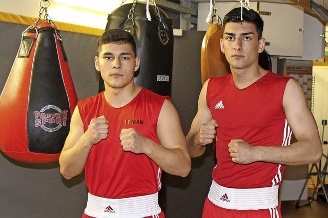 Zwei Boxer bei der DM
