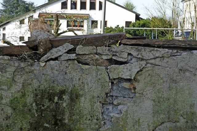 Friedhofsmauer ist stark beschädigt