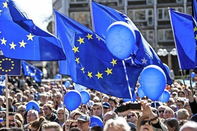 Die europaweite Bewegung